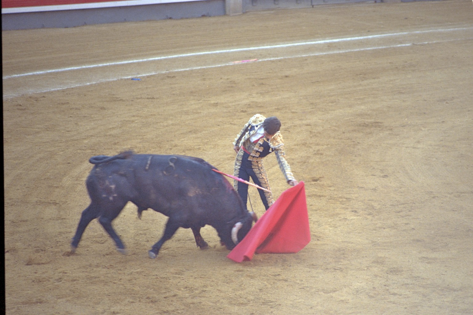 Plaza de Toros, Madrid 2