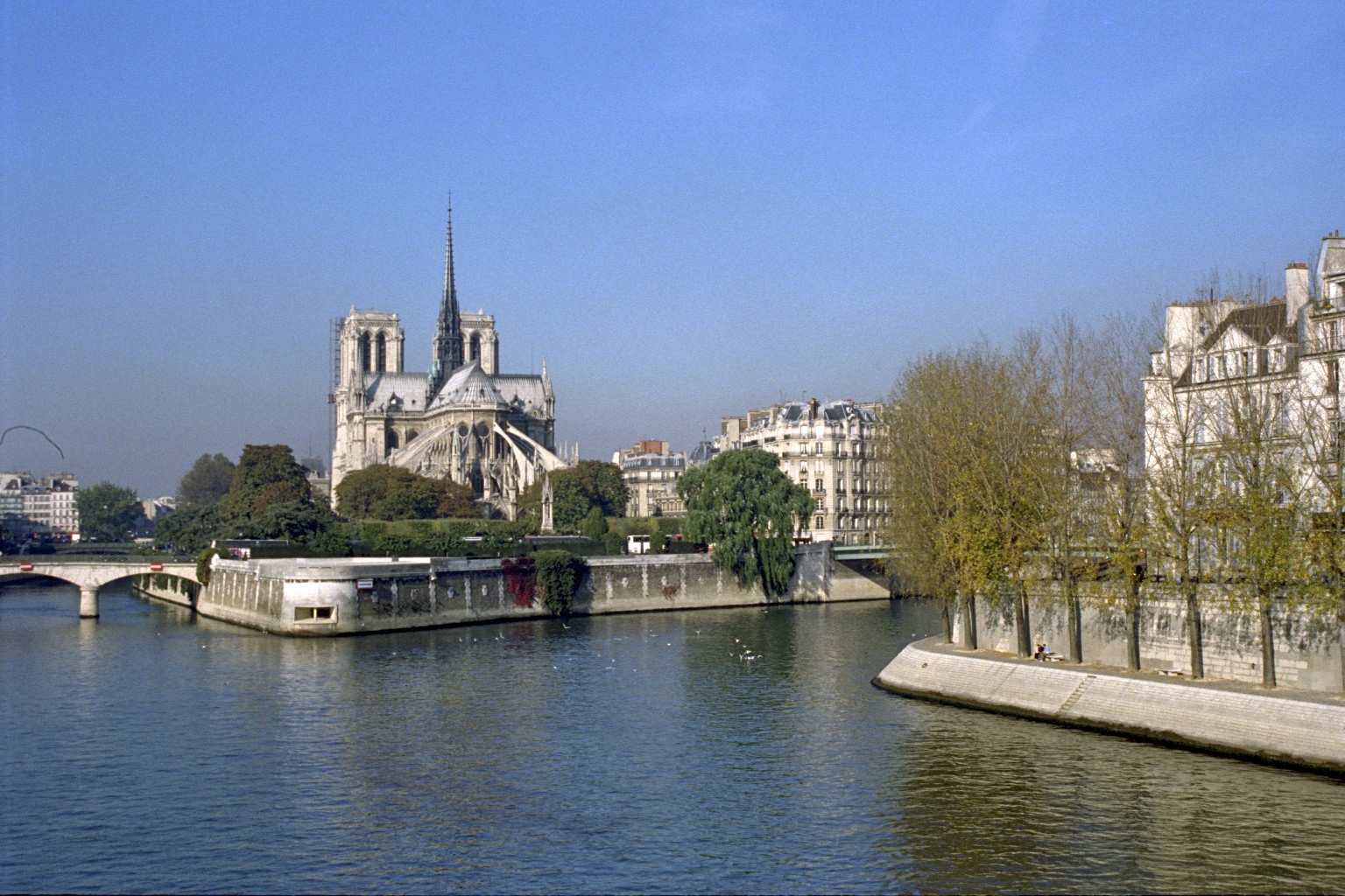Notre Dame, Paris 6